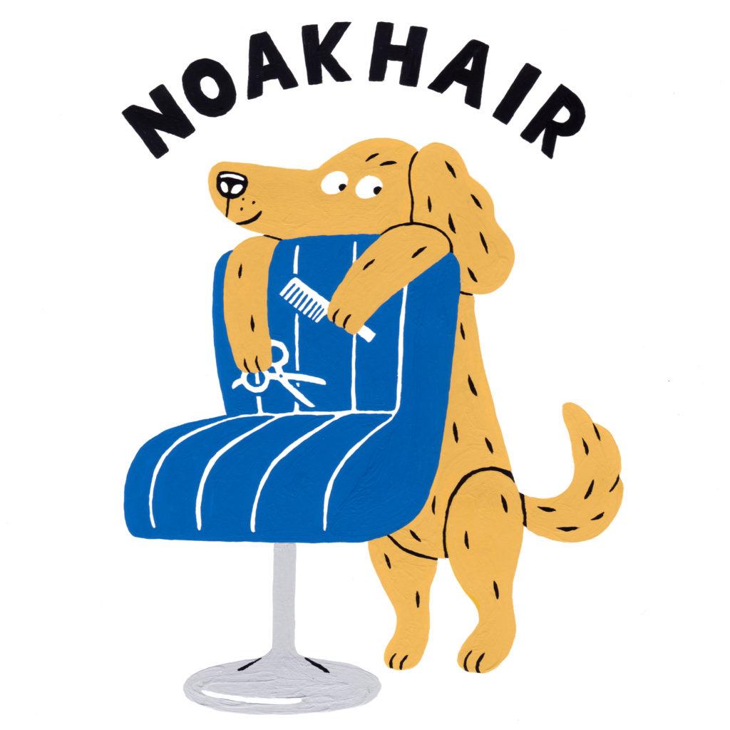 noakhair
